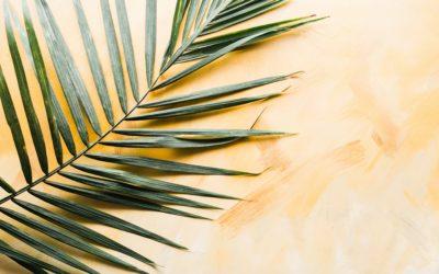 Eucharist for Palm Sunday (28.03)